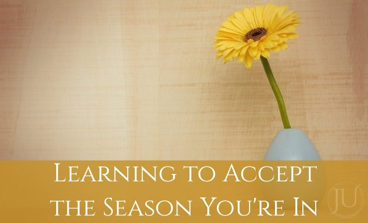Accept the Season You're In