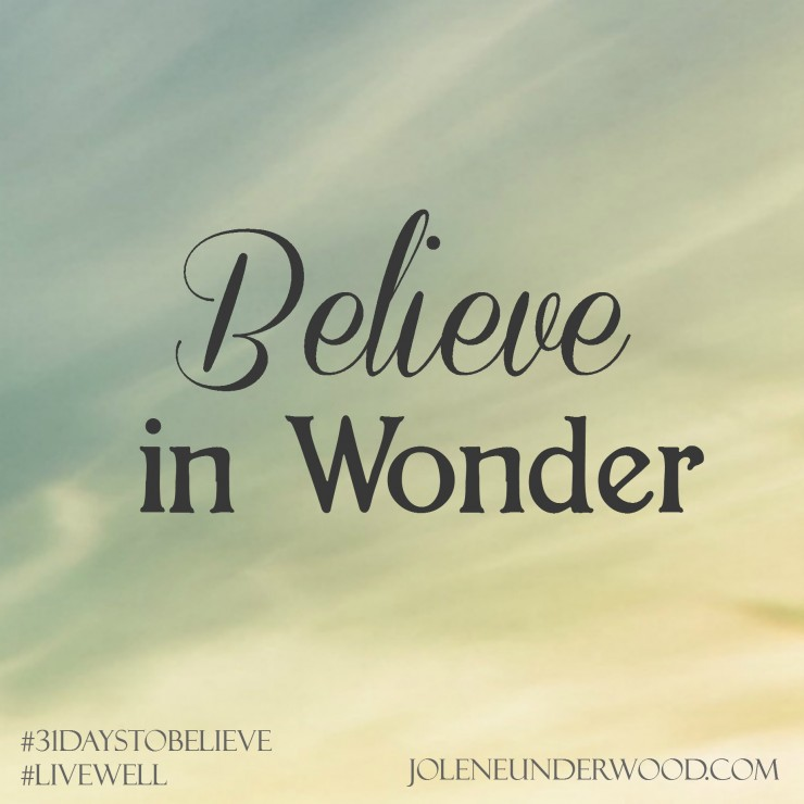 Believe in Wonder #write31days #amwriting #31DaystoBelieve