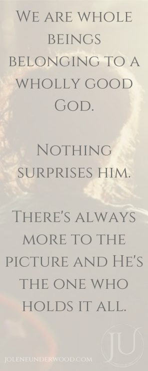 We are whole beings belonging to a wholly good God. Nothing surprises him. There's always more to the picture and He's the one who holds it all.