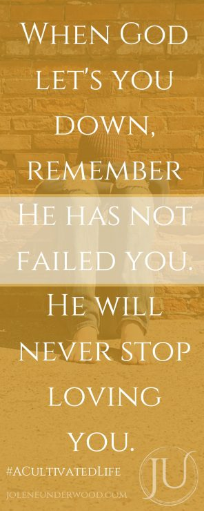 When God let's you down, remember He has not failed you. He will never stop loving you.