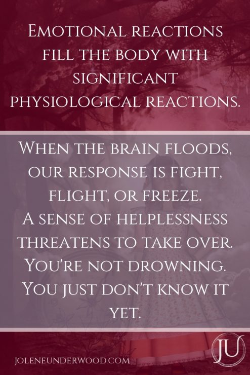 Emotional reactions fill the body with significant physiological reactions. When the brain floods, our response is fight, flight or freeze. A sense of helplessness threatens to take over. You're not drowning. You just don't know it yet.