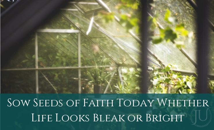 Sow Seeds of Faith Today, Whether Life is Bleak or Bright