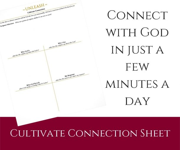 Cultivate Connection Sheet